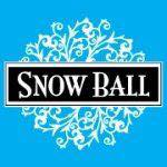 Father Daughter Snow Ball